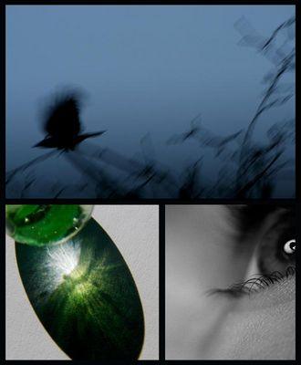verflogene momente ~ verborgene tatsachen ~ (un)vergessene augenblicke