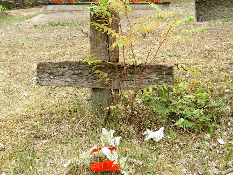Vergessene Gräber auf der kurischen Nehrung