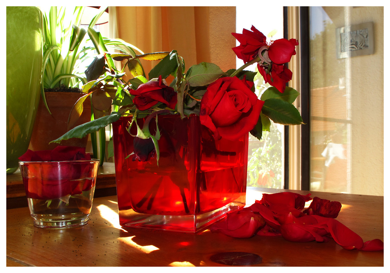 Vergessene Rosen
