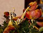 vergessener Blumenstrauß