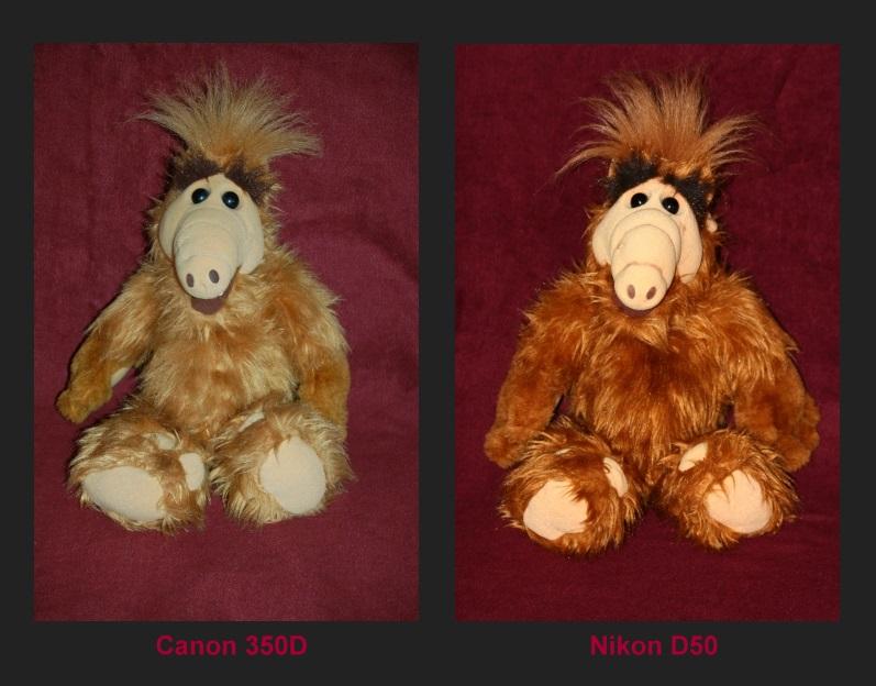 Vergleich Canon/Nikon, welche soll ich kaufen?