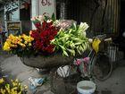Verkauf von Blumen auf dem Fahrrad