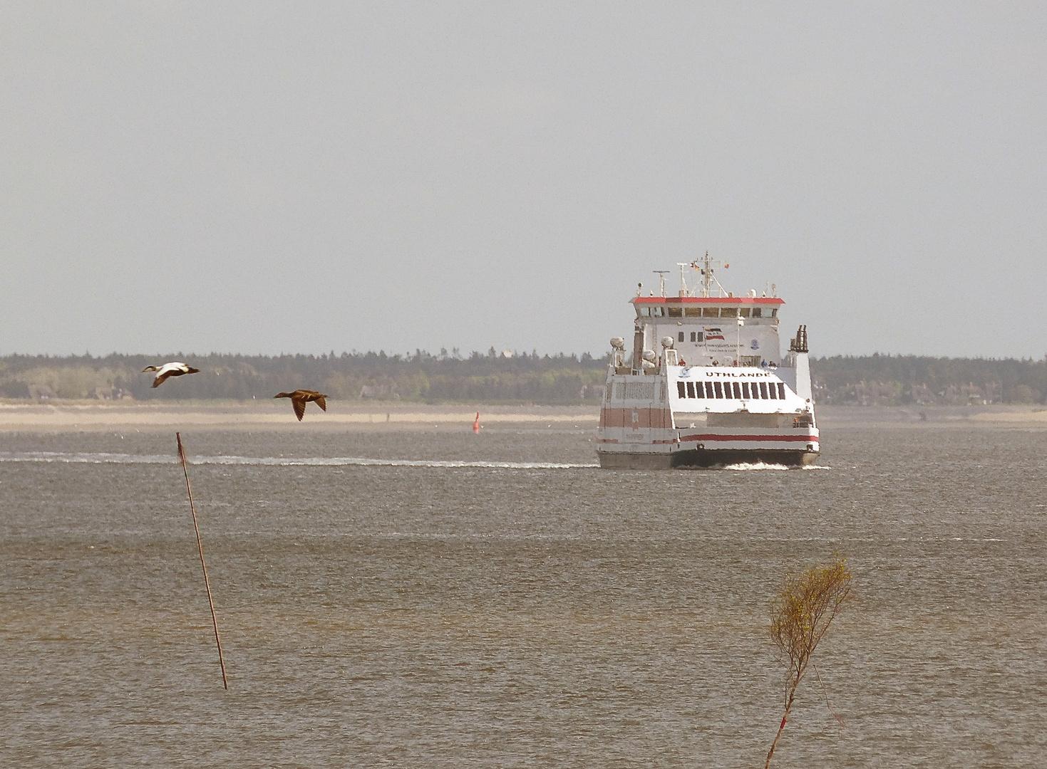 Verkehr im Wattenmeer