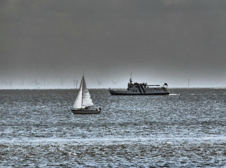 Verkehr im Wattenmeer (Zooom)