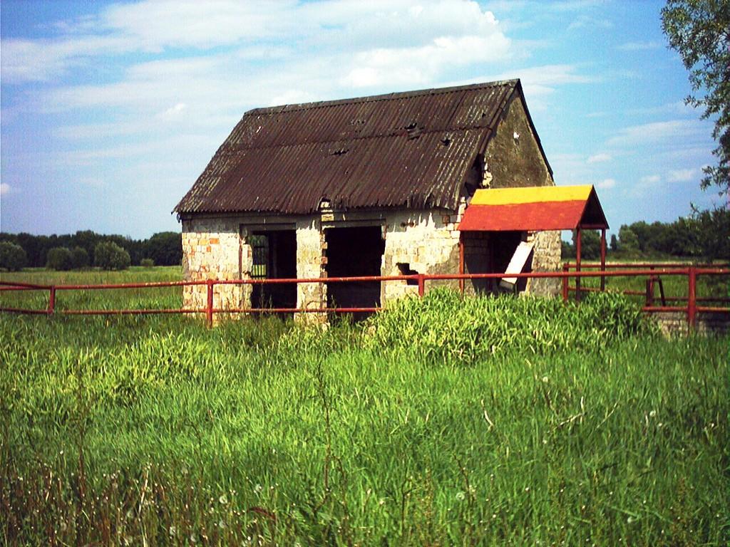 Verlassen im Odervorland