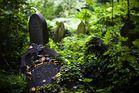 Verlassener Friedhof in Birmingham