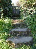 Verlassener Garten