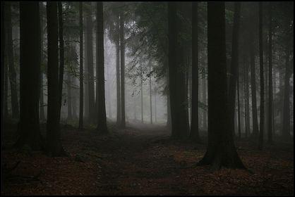 Mensch in mystischer Umgebung