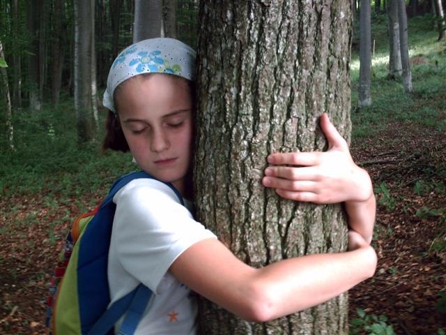 """""""Verliebt in einen Baum"""""""