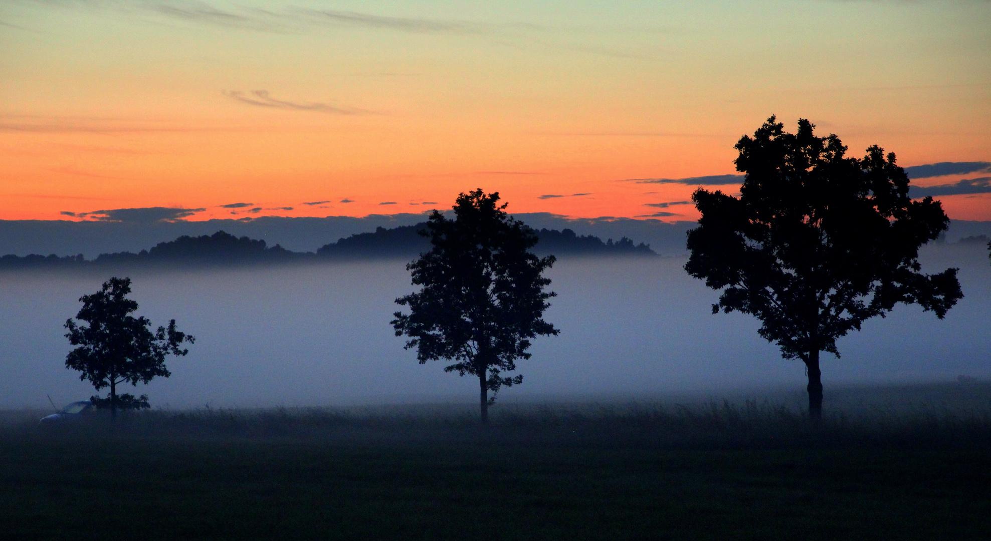 Vernebelter Sonnenuntergang zum Zweiten