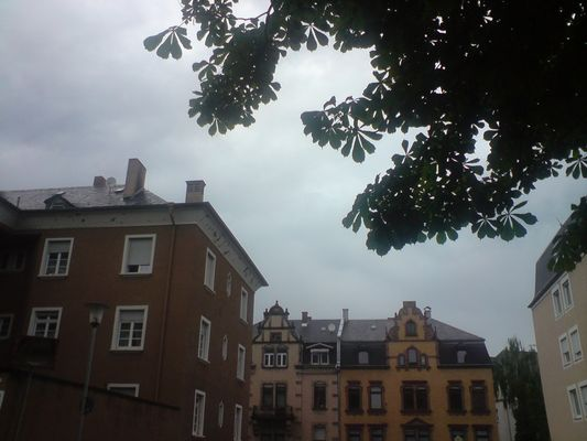Verregnet, verträumt II