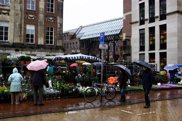 verregneter Blumenmarkt