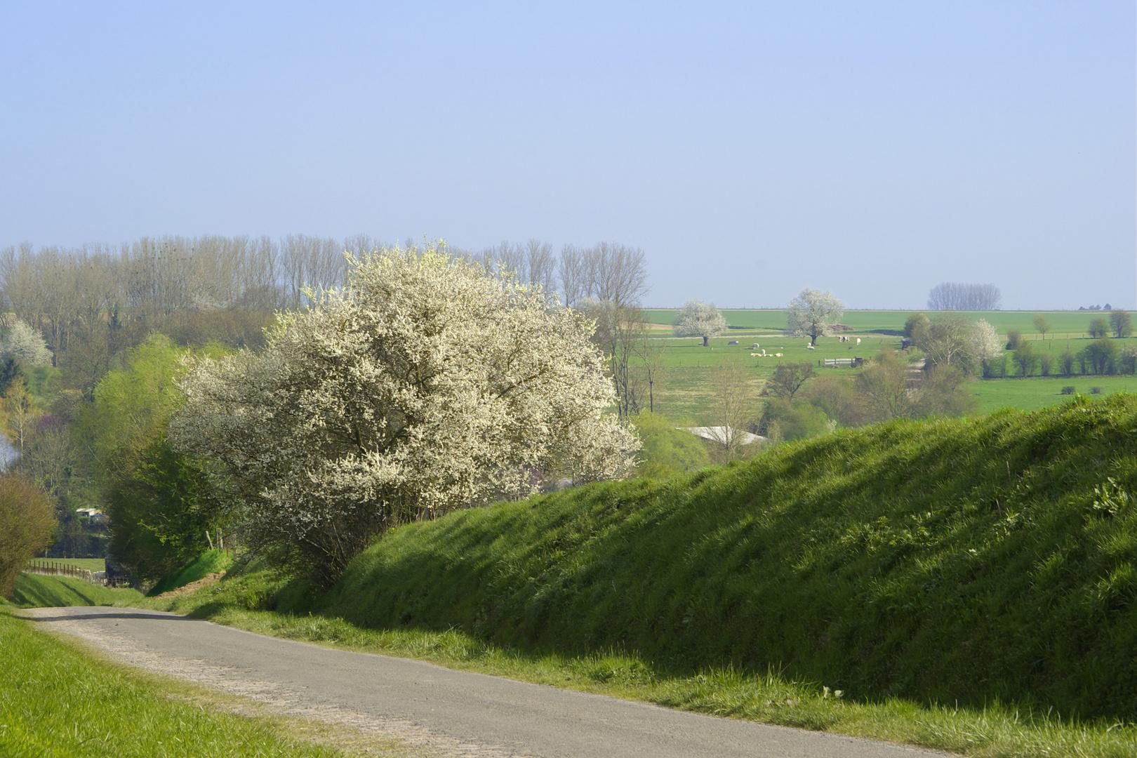 Vers le hameau du buat