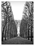 Versailles .IV.