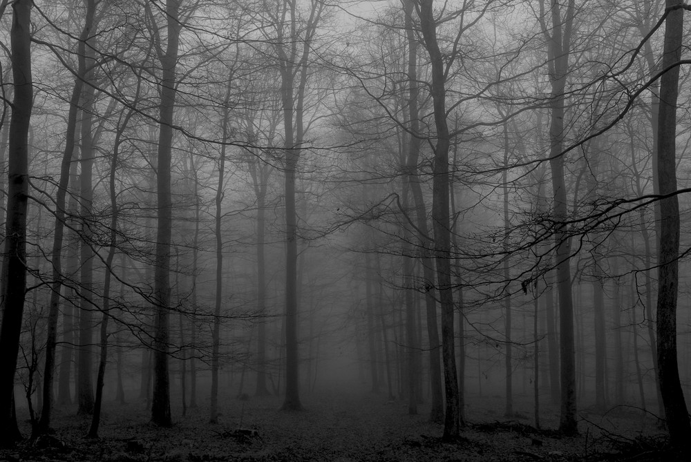 verschleierte dunkelheit