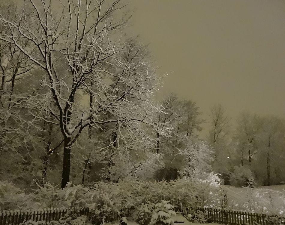 verschneite Abendaufnahme