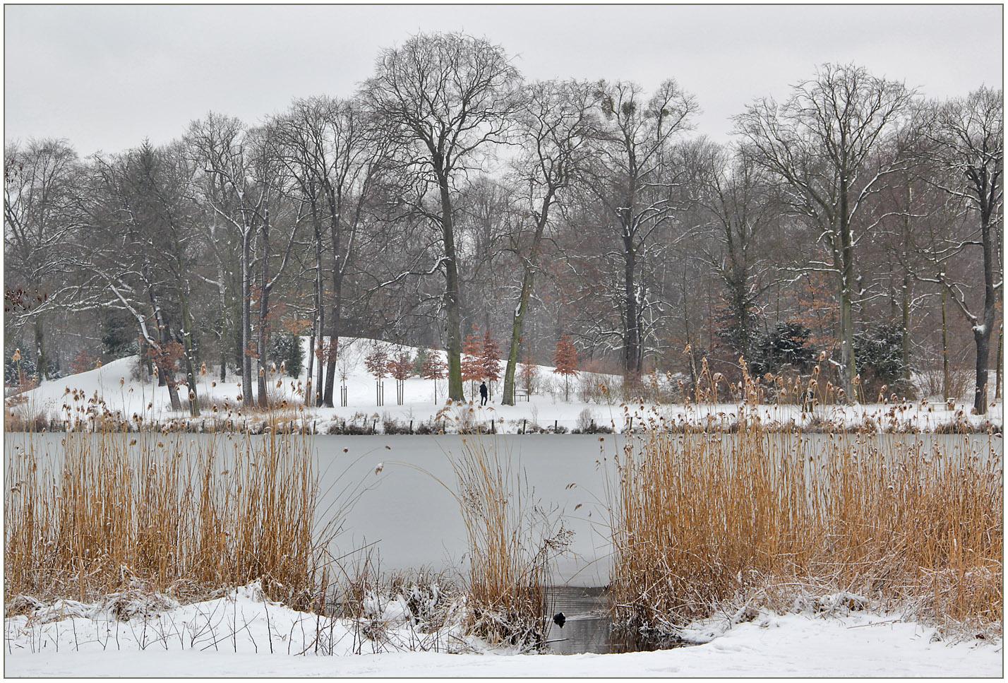 Verschneite Parklandschaft.