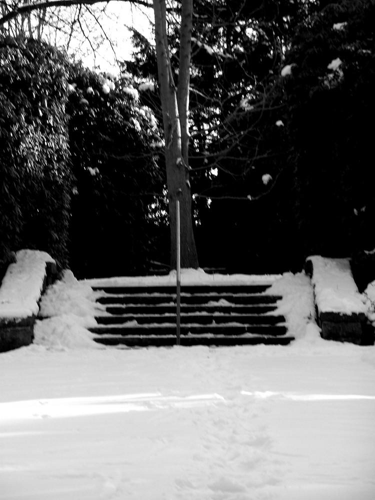 Verschneite Wege