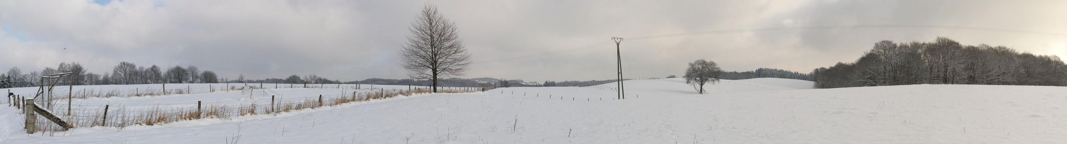 Verschneite Wiesen