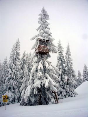 Verschneiter Hochstand neben der Skipiste