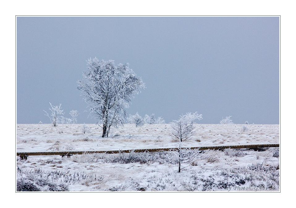 ~verschneiter Steeg~