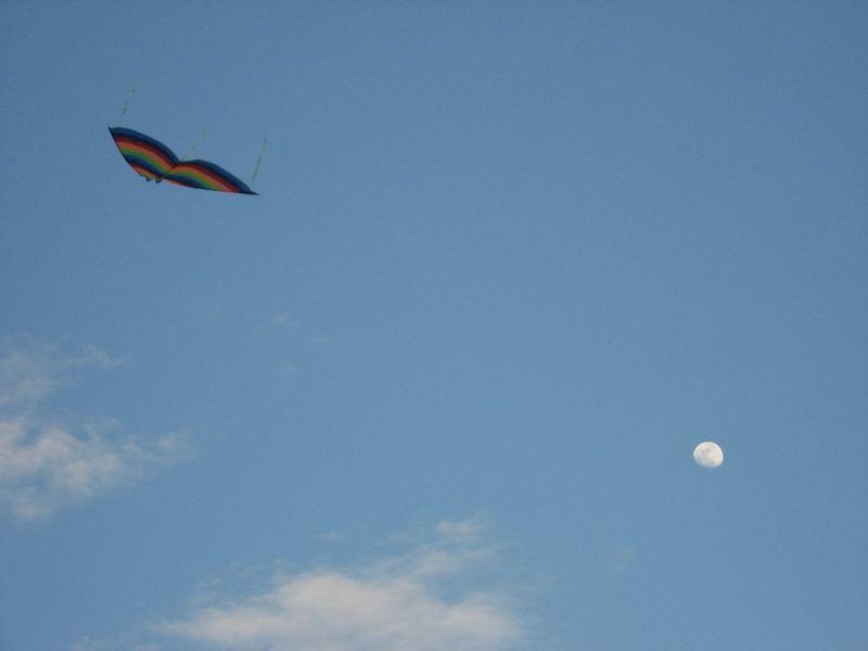 Verso la luna