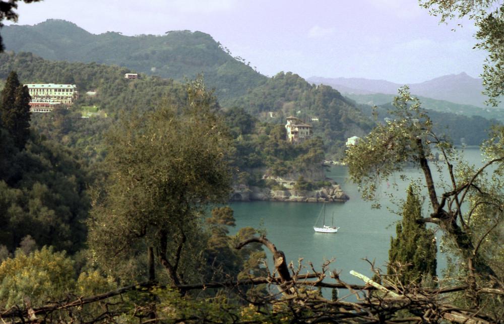 Verso Portofino