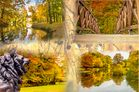 Versuch einer Herbstbild-Collage