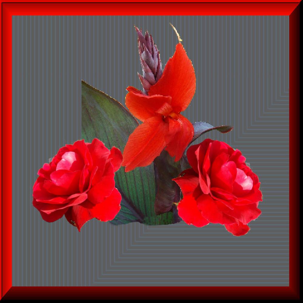 Versuche in Rot