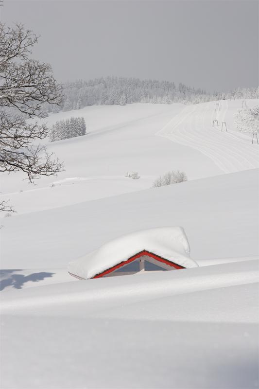 versunken im Schnee