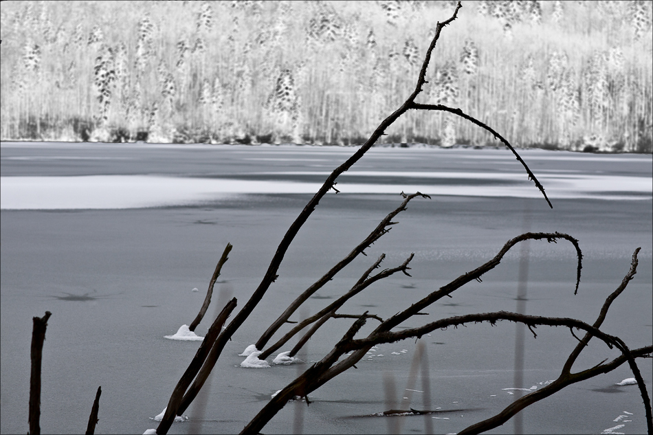 Versunken in Eis und Schnee
