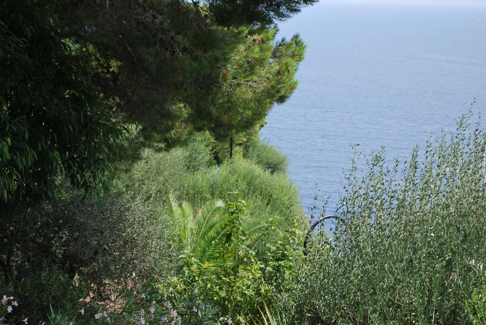 Vert paysage