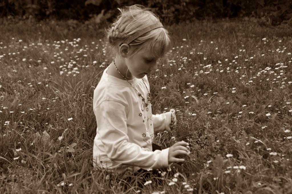 verträumt im Blumenmeer....