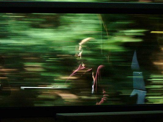 Verträumte Bahnfahrt