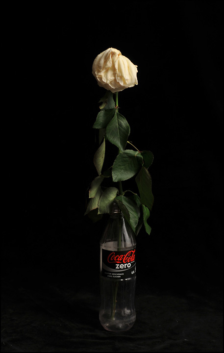 verwelkt, das Schicksal aller Rosen