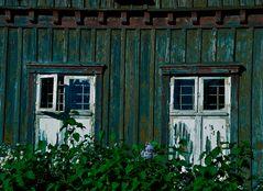 Verwilderte Fassade