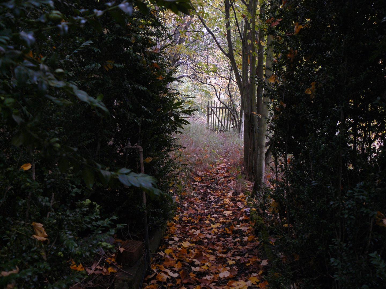 Verwunschener Garten im Herbst