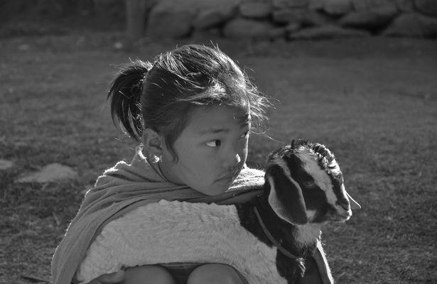 Vetraute Beziehung zwischen Mensch und Tier