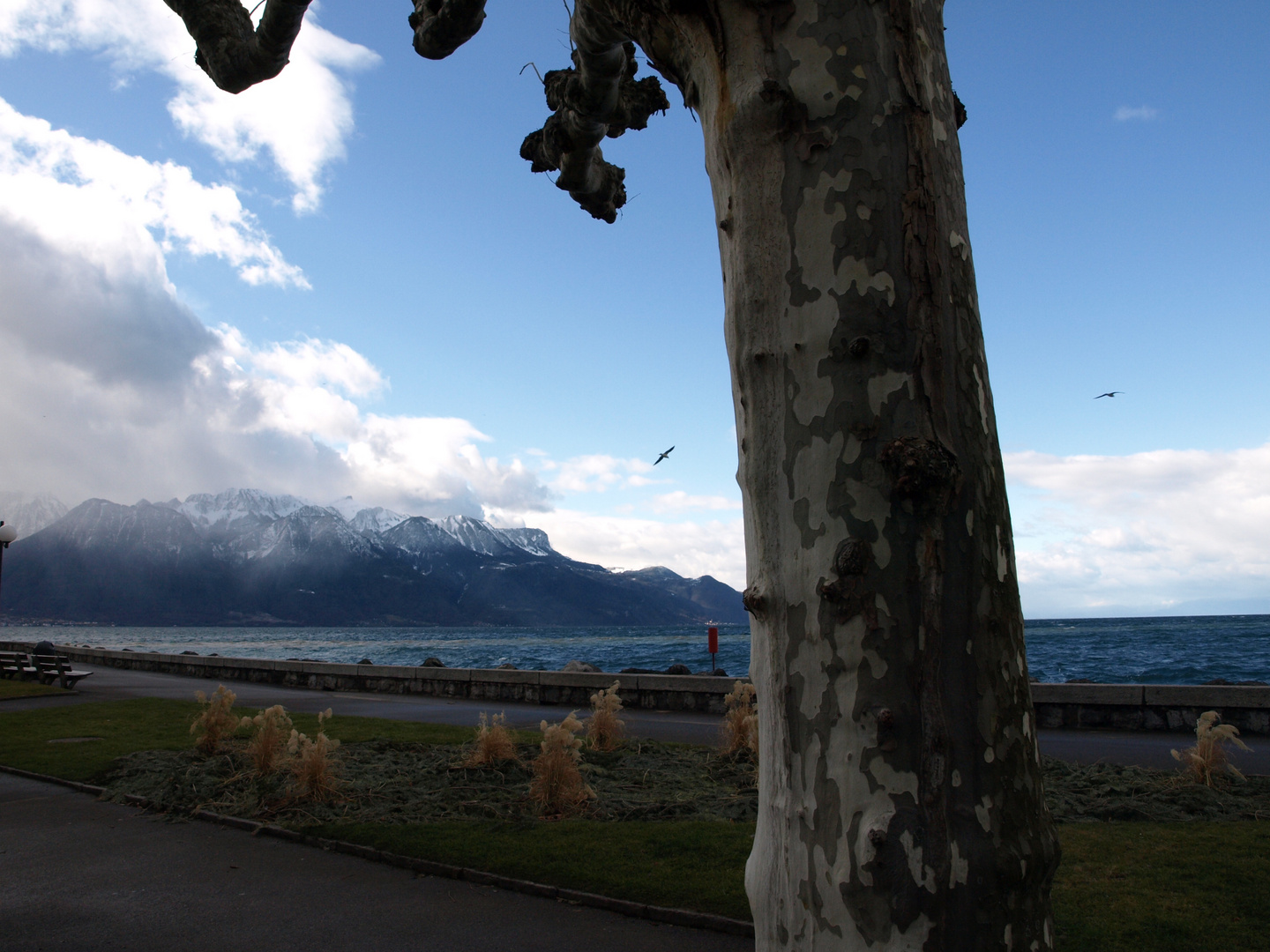 Vevey am Genfer See