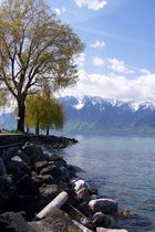 Vevey - Lac Leman
