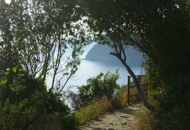Via dell Amore in der Cinque Terre 2007