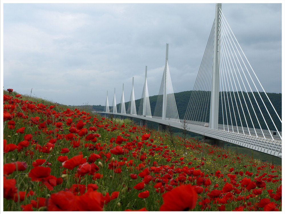 Viadukt de Millau