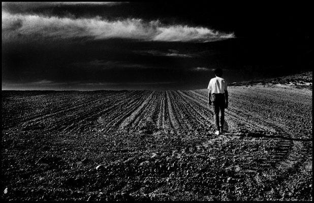 Viaje por la memoria - Campos de Castilla - Autoretrato