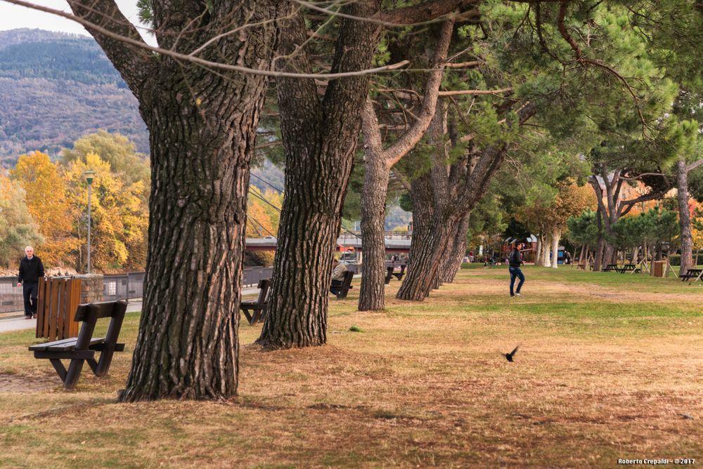 Viale alberato, giardini di Germignaga