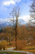 ..vialetti del Castello di Linderhof - Monaco di Baviera