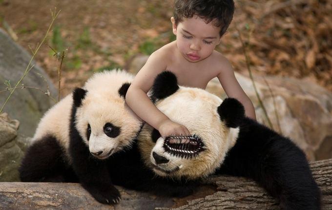Victor y los Panda