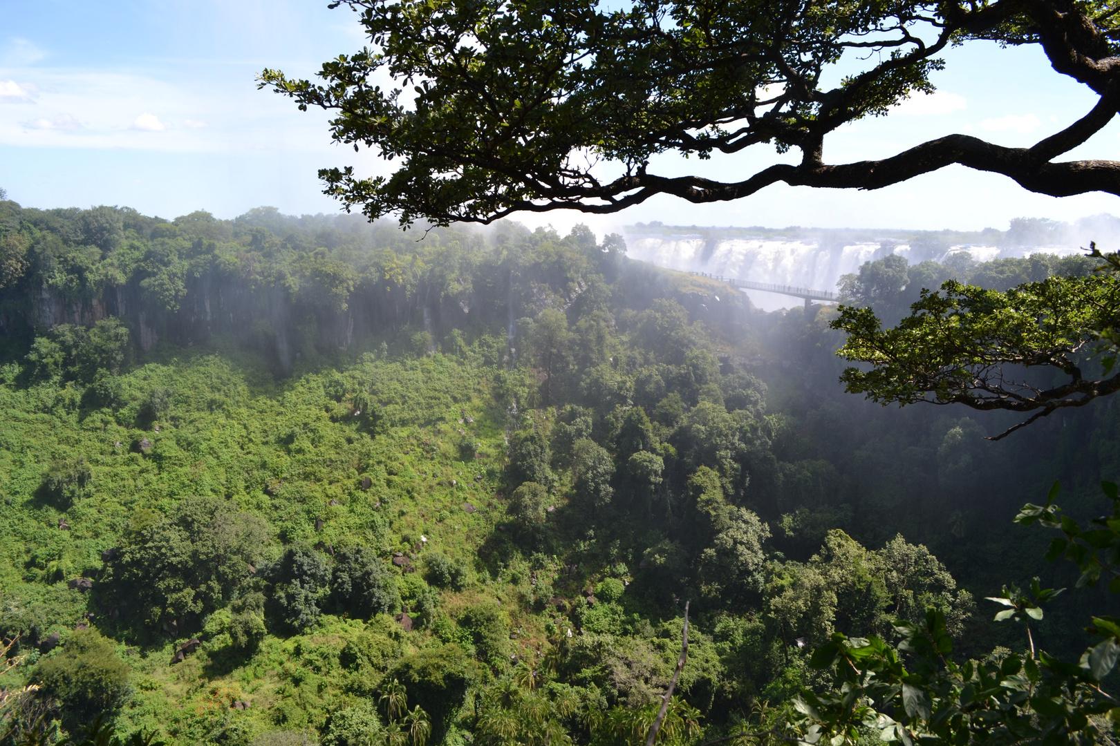 Victoria Falls (Sambia Seite)
