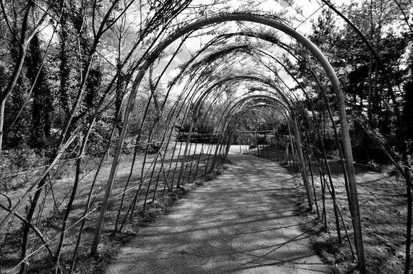 Victoria Park - Belfast