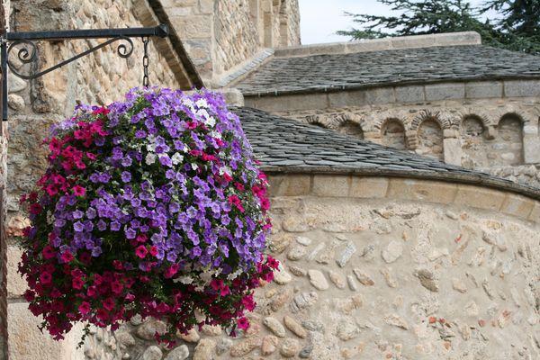 Vieilles pierres fleuries