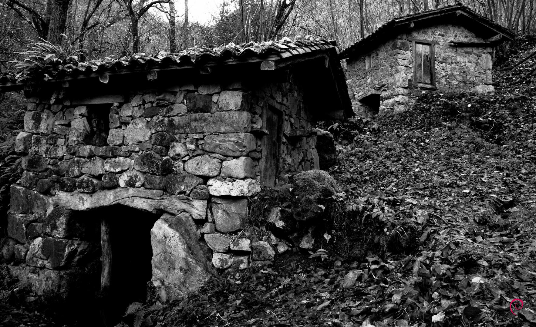 Viejos molinos